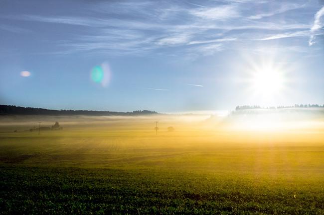 摄图网-阳光下的草原.jpg